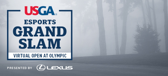 Virtual Open at Olympic